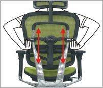 Justerbar højde på ryglænet - ErgoHuman ergonomisk kontorstol